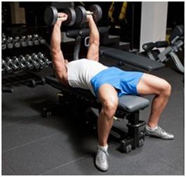 dumbbell bench press dumbbell bench press hareketi nasıl yapılır