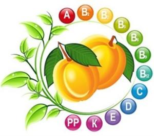 vitamin çeşitleri