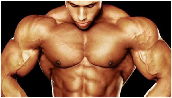 steroid synthol nedir