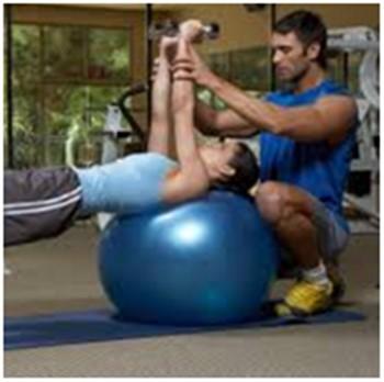 fitness adaptasyon programı