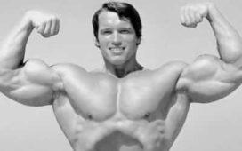 Arnold vücut geliştirme ve beslenme programı