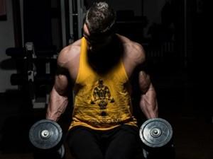 profesyonel fitness programları