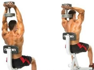 triceps hareketleri